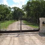 Gate 11